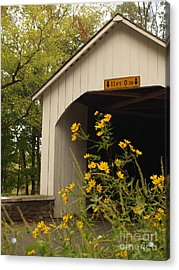 Loux Bridge And Tickseed In September Acrylic Print by Anna Lisa Yoder
