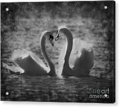 Love Is.. Acrylic Print by Nina Stavlund