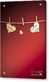 Love On The Line Acrylic Print by Jan Bickerton
