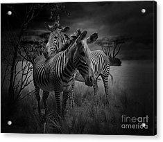 Love Season IIi - African Dream I Acrylic Print by Xueling Zou