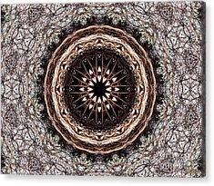 Loving Nature Acrylic Print by Hanza Turgul