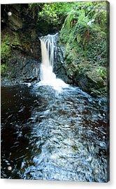 Lower Fall Puck's Glen Acrylic Print by Gary Eason