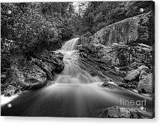 Lower Falls On Big Run River  Acrylic Print by Dan Friend