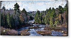 Lower Tahquamenon Falls Michigan Acrylic Print by Evie Carrier