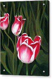 Luminous Acrylic Print by Anastasiya Malakhova