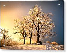 Luminous - Blue Ridge Winter Sunset Acrylic Print by Dave Allen