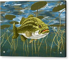 Lurking Lunker Acrylic Print by Kevin Putman