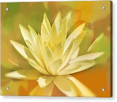Luscious In Yellow Acrylic Print by Diane Wood
