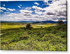 Lush Landscapes Acrylic Print by Tony Boyajian