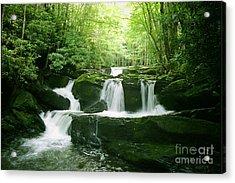 Lynn Camp Prong Falls Acrylic Print by Arthaven Studios Teri Atkins Brown