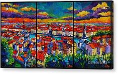 Lyon Panorama Triptych Acrylic Print by Mona Edulesco