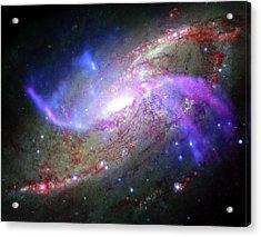 M106 Galaxy Acrylic Print by Nasa/cxc/ Caltech/p.ogle Et Al./stsci/jpl-caltech/nsf/nrao/vla