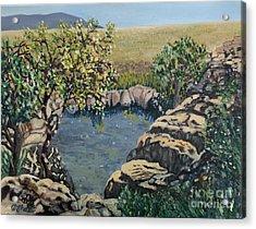 Mac Mac Pools Acrylic Print by Caroline Street