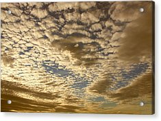 Mackerel Sky Golden Acrylic Print by Amanda Holmes Tzafrir