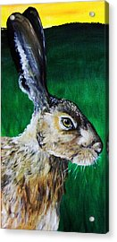 Mad As A March Hare Acrylic Print by Stacey Clarke