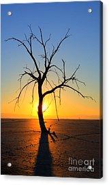 Magic At The Salton Sea Acrylic Print by Bob Christopher