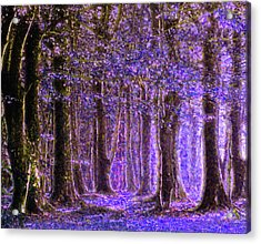 Magic Forest - Impressionism Acrylic Print by Georgiana Romanovna
