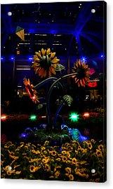Magic Garden Acrylic Print by Donna Blackhall
