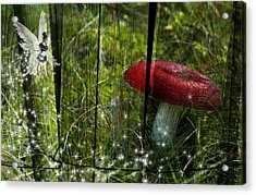 Magic Mushroom. Acrylic Print by Nathan Wright