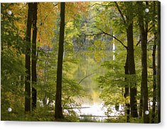 Magical Maplewood Acrylic Print by Penny Meyers