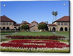 Main Quad Stanford California Acrylic Print by Jason O Watson