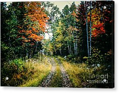 Maine Back Road Acrylic Print by George DeLisle