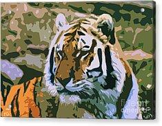 Majestic Tiger Acrylic Print by Mark Brady