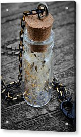 Make A Wish - Dandelion Seed In Glass Bottle With Gold Fairy Dust Necklace Acrylic Print by Marianna Mills