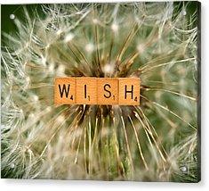 Make A Wish Acrylic Print by  Onyonet  Photo Studios