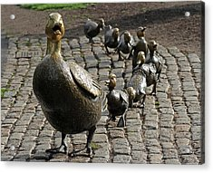 New England Acrylic Print featuring the photograph Make Way For Ducklings by Juergen Roth
