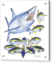 Mako Attack Acrylic Print by Carey Chen