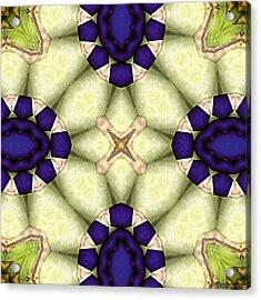 Mandala 115 Acrylic Print by Terry Reynoldson