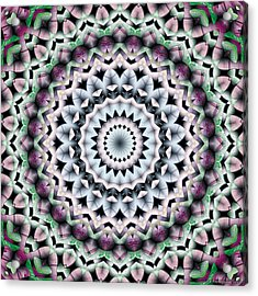 Mandala 40 Acrylic Print by Terry Reynoldson