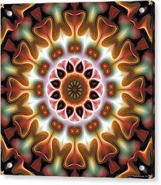 Mandala 67 Acrylic Print by Terry Reynoldson
