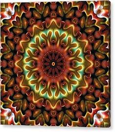 Mandala 71 Acrylic Print by Terry Reynoldson