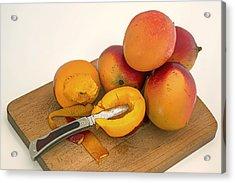 Mango - The Tropical Fruit Acrylic Print by Mountain Dreams
