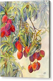 Mangoes In The Evening Light Acrylic Print by Dorothy Boyer