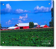 Many Layers Of Sights To Behold Acrylic Print by Tina M Wenger