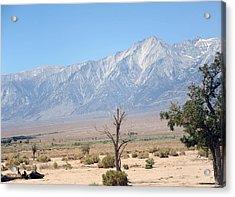 Manzanar-sierra Nevada Mountains I Acrylic Print by Harold E McCray