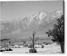 Manzanar-sierra Nevada Mountains II Acrylic Print by Harold E McCray