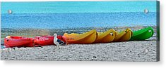 March Of The Seagull Acrylic Print by Christine Till