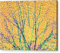 Marmalade Sky Acrylic Print by Ann Johndro-Collins