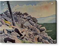 Marmot Hill Acrylic Print by Thomas Stratton