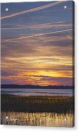Marsh Sunset Acrylic Print by Phill Doherty