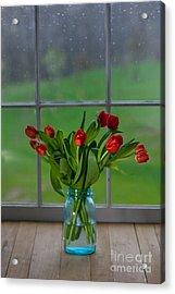 Mason Jar With Tulips Acrylic Print by Kay Pickens