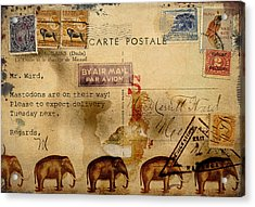 Mastodons Are On Their Way Acrylic Print by Carol Leigh