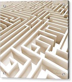 Maze Acrylic Print by Stefano Senise