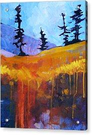 Meadow Mountain Acrylic Print by Nancy Merkle