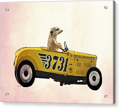 Meerkat And Hot Rod Acrylic Print by Kelly McLaughlan