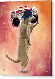Meerkat With A Ghettoblaster Acrylic Print by Kelly McLaughlan